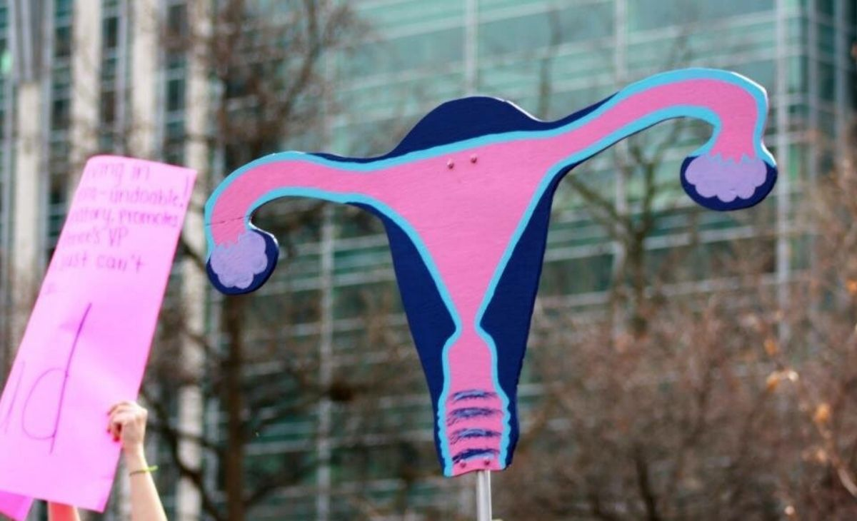 pink uterus poster Social Justice And Birth